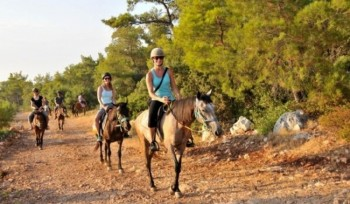 Horse Riding post image